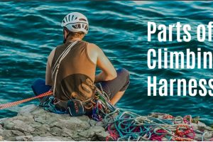 The Parts of A Climbing Harness You Need to Know!